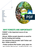 Forest & Biodiversity ppt