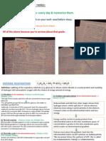 Edexcel A2 Biology Unit 5 Revision Cards [Autosaved]