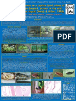 Scientific Poster -Zoogoneticus Tequila- Aipvet meeting 2013