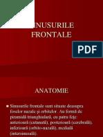 SINUSURILE FRONTALE