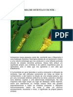 A CORDA DE OITENTA E UM NÓS.pdf