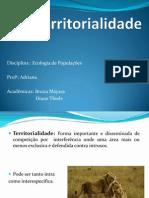 seminário Territorialidade