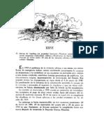 c26piedras y Leyes, Capitulo 26