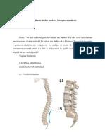 Diploma -  Hernia de disc