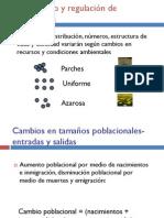 Estructura_Poblaciones_Metapoblaciones