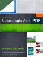 Biotecnologia Verde