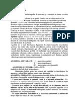 ANOREXIA 2010 scurt.pdf
