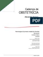 4_-_Caderno_de_Obstetrícia_-He[1]