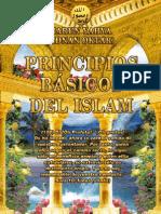 Principios básicos del Islam
