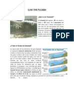 LOS TSUNAMIS scrid.pdf