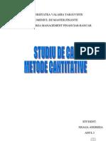 Referat Topliceanu Metode Cantitative