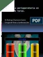 Dr. Chamorro - Analgesia