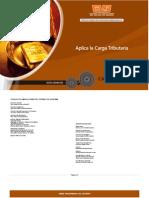 CDFCPT6s_Aplica_Carga_Tributaria.doc