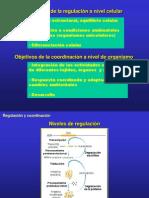 6.4.Regulacion