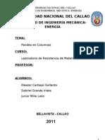 Informe de Pandeo