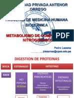 Metabolismo de Compuestos Nitrogenados 1