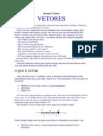 Resumo.Teórico.Vetores.pdf