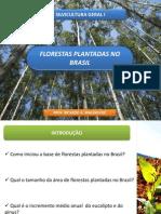SÍNTESE_SETOR_FLORESTAL