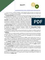 44899_179723_Guía 1