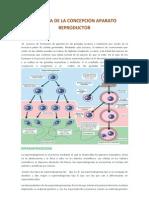 Biologia de La Concepcion Aparato Reproductor (Autoguardado)