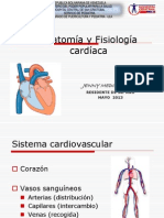 Anotomia y Fisiologia Cardiaca