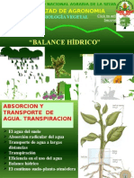 4 Clase Balance Hidrico 2013