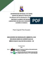 INDICADORES DE DEGRADAÇÃO AMBIENTAL Rio Acaraú