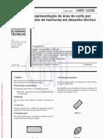 NBR-12298.pdf