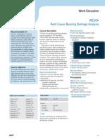 Skf Bearing Damage Analysis