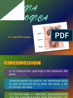 Cirugia Urologica II