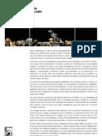 Actividades Pedro Avellaned