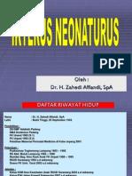 IKTERUS NEONATORUS
