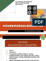 3.5.16 Pemeriksaan Radiologik Kelainan Muskuloskeletal