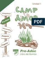 Preadoc1COLORCampAmor New Smallish