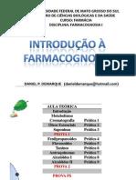 Aula INTRODUÇÃO - Daniel