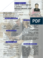 SINTESIS CURRICULAR DEUDIS ALMAO 2013.docx