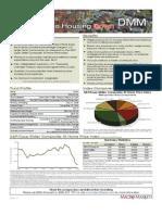 Macroshares DMM Factsheet