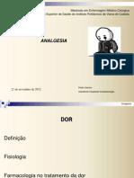 Analgesia + BNM