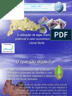 A utilização de algas marinhas_potencial e valor económico para o litoral norte