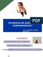 EVIDENCIA AUDITORIA (1)