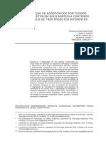 basidiomicetos na biorremediação