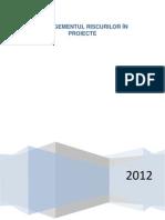 Managementul Riscurilor Masterat MIP2012