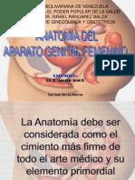 Anatomia e Histologia Del Aparato Genital Femenino