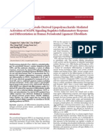 Porphyromonas gingivalis-Derived Lipopolysaccharide-Mediated Activation of MAPK Signaling Regulates Inflammatory Response and Differentiation in Human Periodontal Ligament Fibroblasts