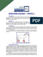 SARCÓIDE EQUINO - PARTE 2