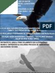 Aguila s Reno Vada