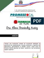 Presentación Dra. Elena Fernández en el Encuentro con los Medios