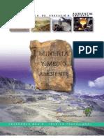 Libro Mineria - Copia