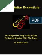 Blues Guitar Essentials
