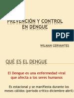 Prevención y Control del DENGUE 2013
